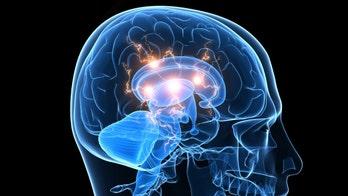 Brain study provides clues at how fibromyalgia works
