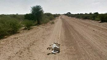 Did Google run over a donkey in Botswana?