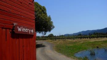 Northern California's secret wine country
