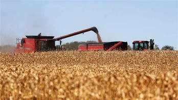 Michigan hunter, 14, dies after being run over by corn harvester: reports