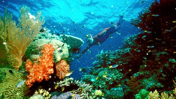 Australia approves dumping dredged mud around Great Barrier Reef