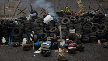 Ukraine asks for UN Security Council help