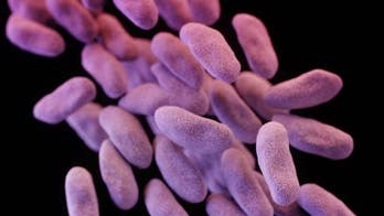 Rising concern over drug-resistant germs prompts UN response