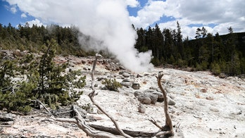Long-dormant Yellowstone hot spring erupts