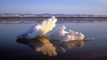 House votes to ban drilling in Arctic refuge