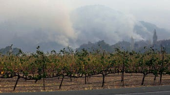 How smoke can affect wine crops