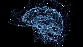 Human brains could be connected to the internet in 'next few decades,' scientists predict