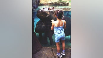 Taking the Kids -- to a free zoo