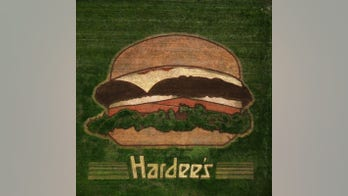 Hardee's puts giant 'crop burger' in Nashville-area field