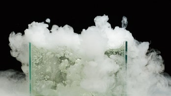 Woman likely died after inhaling dry ice fumes from ice cream coolers: police