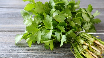 A genetic test can determine if you will hate cilantro