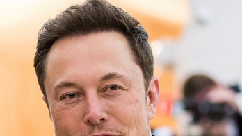 Elon Musk offered $150,000 for porn film role