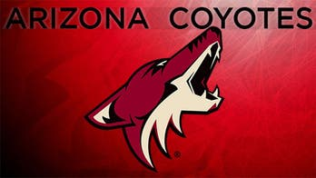 Coyotes' Gutierrez becomes NHL's first Latino CEO