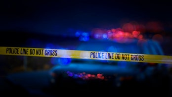 Ron Hosko: The truth about fatal shootings by police
