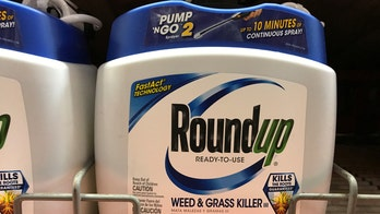 Heavily used herbicide tied to shorter pregnancies