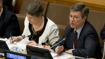 UN special adviser leaves Sanders advisory role after months of attacks on Hillary Clinton