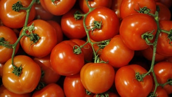 Perfection in a red dress: Ode to the tomato