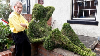 Topiary artist sick of drunkards having pretend-sex with bush shaped like nude woman