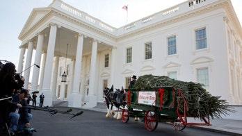 White House Christmas Tree Grown by Latinos