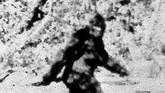 Bigfoot sightings: 8 best states to see the legendary Sasquatch