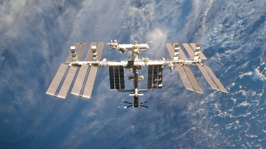 'Organs on chips' set for launch to the International Space Station