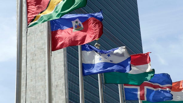 Flags of some of the 193 countries fly in the breeze outside the United Nations building in New York City.