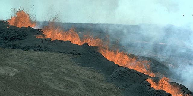 Mauna Loa is the largest volcano on the planet.
