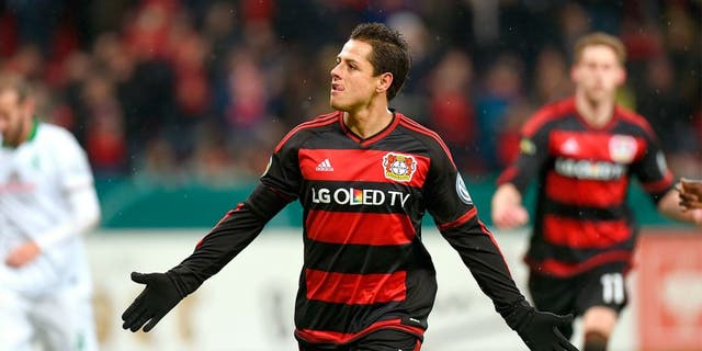 Leverkusen's Mexican striker Javier Hernandez celebrates after a goal during the German Cup (Pokal) quarter final football match Bayern 04 Leverkusen v SV Werder Bremen on February 9, 2016 in Leverkusen. / AFP / PATRIK STOLLARZ / RESTRICTIONS: ACCORDING TO DFB RULES IMAGE SEQUENCES TO SIMULATE VIDEO IS NOT ALLOWED DURING MATCH TIME. MOBILE (MMS) USE IS NOT ALLOWED DURING AND FOR FURTHER TWO HOURS AFTER THE MATCH. == RESTRICTED TO EDITORIAL USE == FOR MORE INFORMATION CONTACT DFB DIRECTLY AT +49 69 67880 / (Photo credit should read PATRIK STOLLARZ/AFP/Getty Images)