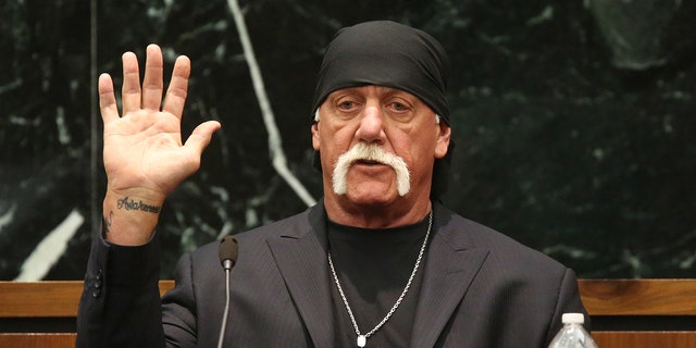Hulk Hogan, whose real name is Terry Bollea, is reportedly being courted to run for U.S. Senate in Florida.