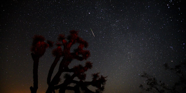 A meteorite streaks over a Yucca Tree on August 13, 2018 near Death Valley in Trona, California.