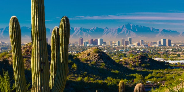 Midtown Phoenix skyline with several cacti and desert hills in the foreground.