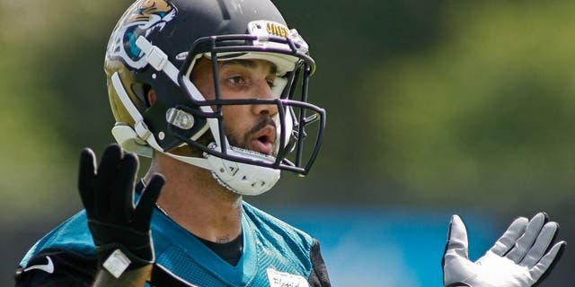 May 28, 2015; Jacksonville, FL, USA; Jacksonville Jaguars wide receiver Tandon Doss (17) during OTAs at the Florida Blue Health and Wellness Practice Fields. Mandatory Credit: Phil Sears-USA TODAY Sports