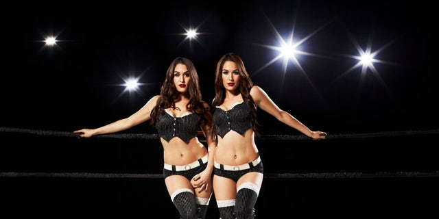 Nikki and Brie Bella in a promotional photo for their E! reality TV show 'Total Bellas.'