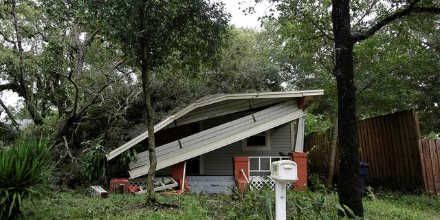 A home damaged by a tree is seen after Hurricane Irma made landfall in Tampa.