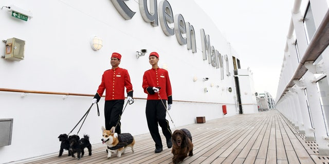 Pampered pooches prepare to board the Queen Mary 2 at the Brooklyn Cruise Terminal.