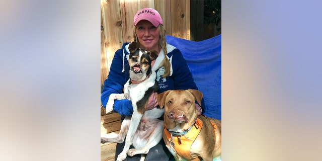 His new owner, Liesl Wilhardt, runs the non-profit Luvable Dog Rescue and also owns Picasso, a corgi pit bull mix with a twisted jaw, along with seven other pups.