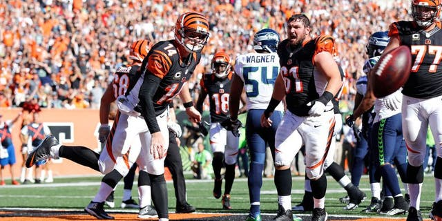 Oct 11, 2015; Cincinnati, OH, USA; Cincinnati Bengals quarterback Andy Dalton (14) spikes the football after scoring a touchdown in the second half against the Seattle Seahawks at Paul Brown Stadium. The Bengals won 27-24. Mandatory Credit: Aaron Doster-USA TODAY Sports