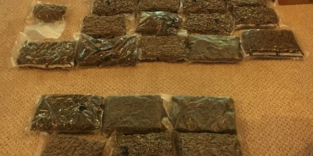 Authorities seized more than 300 pounds of marijuana and more than 1,500 plants.