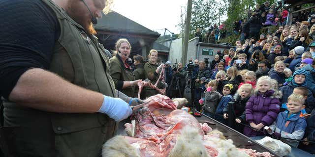 Oct. 15, 2015: Children watch the dissection of a dead male lion in Odense Zoo, Denmark.