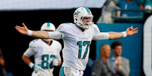 Dec 15, 2013; Miami Gardens, FL, USA: Miami Dolphins quarterback Ryan Tannehill (17) reacts after a touchdown pass in the fourth quarter against the New England Patriots at Sun Life Stadium. The Dolphins won 24-20. Mandatory Credit: Robert Mayer-USA TODAY Sports