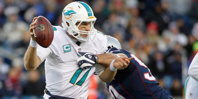 Dec 14, 2014; Foxborough, MA, USA; New England Patriots defensive end Rob Ninkovich (50) tackles Miami Dolphins quarterback Ryan Tannehill (17) during the fourth quarter at Gillette Stadium. The Patriots won 41-13. Mandatory Credit: Stew Milne-USA TODAY Sports