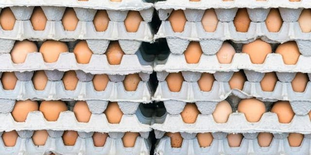 A total of 35 people contracted salmonella linked to the massive egg recall that was announced in mid-April. (iStock)