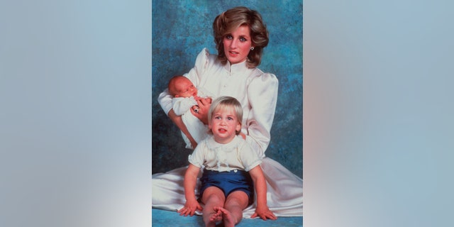A 1984 file photo of the late Princess Diana with sons Prince William, foreground, and Prince Harry.