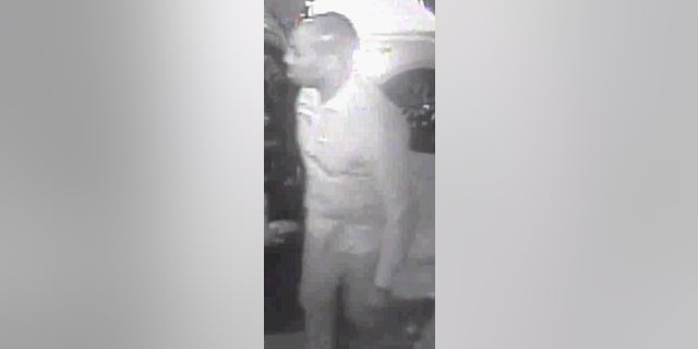 Police said they are looking for the driver who punched Szabo.
