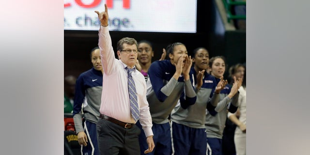 Connecticut head coach Geno Auriemma instructs the defense as the bench cheers late in the second half of an NCAA college basketball game against Baylor, Monday, Jan. 13, 2014, in Waco, Texas. Connecticut won 66-55. (AP Photo/Tony Gutierrez)