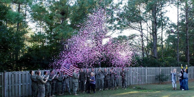 Cassie Lohrey celebrated Veteran's Day with a gender reveal party on Saturday.