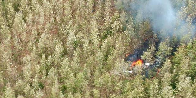 Witnesses said the plane burst into flames after crashing.
