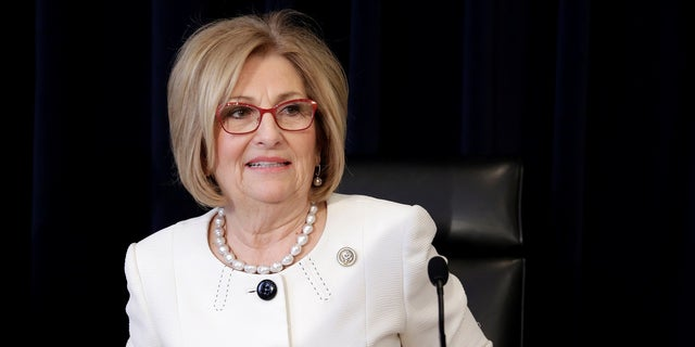 Rep. Diane Black, a Republican, ran for governor in Tennessee but lost the GOP primary.