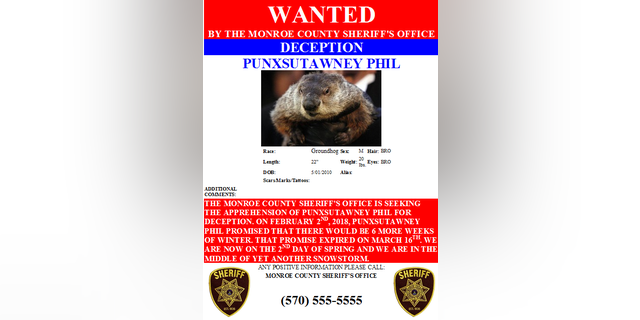 """Monroe County Sheriff's Office places a  """"warrant"""" is out for Punxsutawney Phil's arrest."""