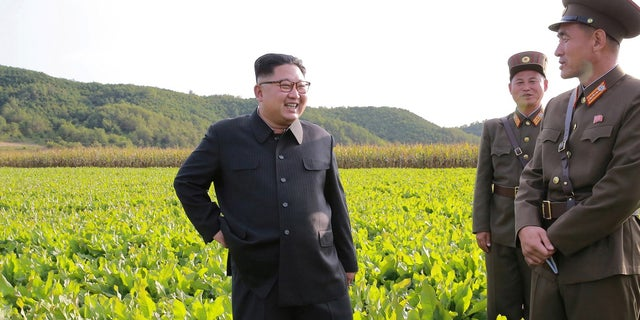 North Korean leader Kim Jong Un visits a Farm No. 1116 of KPA Unit 810.